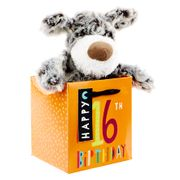 16th Birthday - Grey & White Dog in Gift Bag save £1.99