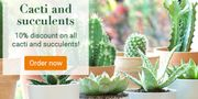 Bakker.com - Cacti and Succulents: Now 10% off on These Rugged Eye-Catchers