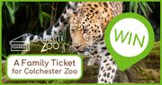 Win a Family Ticket to Colchester Zoo!