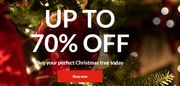 Up to 70% off Christmas Trees