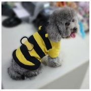 Little Dog Bee Jumper at Amazon