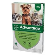 Advantage 40 Spot on for Small Cats, Small Dogs and Rabbits up to 4kg 4 per Pack