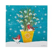 Best Price! 3 Packs of 10 Cards Lots to Choose from 16%off at Marie Curie Shop