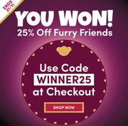 25% off at Build a Bear