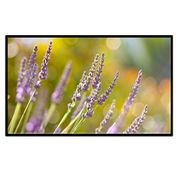 """Excelvan 84"""" 16:9 73""""x41"""" Viewing Area 1.1 Gain Projector Projection Screen"""