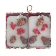 Argos Home Christmas Spice Set of 2 Pomanders 117/1165