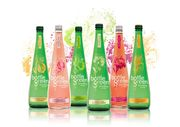 Bottlegreen Sparkling 750ml (6 Flavors to Choose From)