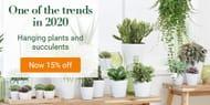 Bakker.com - 15% off All Hanging Plants and Succulents!
