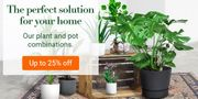 Bakker.com - Need a Plant with Pot? up to 25% off on All Combinations
