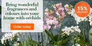 Bakker.com - 15% off Orchids