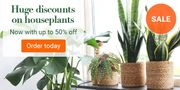 Bakker.com - Green, Green and More Green: Up to 50% Off