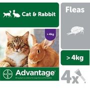 Advantage 80 Flea Treatment for Large Cats and Rabbits 4 Pipettes-3 for 2