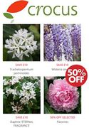 Special Offer - CROCUS Gardening - Biggest Choice of Plants in UK!