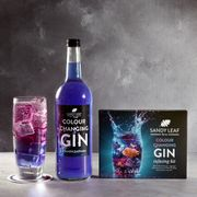 Colour Changing Gin Infusing Kit - FREE DELIVERY