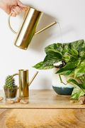 Roxy Gold Large Watering Can £19.00