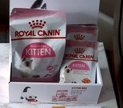 Free Box of Dry and Wet Royal Canin Kitten Food When You Spend £10