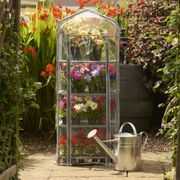 Wilko Mini Greenhouse