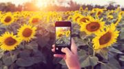 80% off the Complete iPhone Photography Course (Updated with iOS 13)