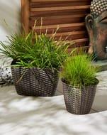 Set of 4 Rattan Effect Garden Planters