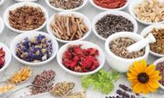 £19 for an Online Master Herbalist Course