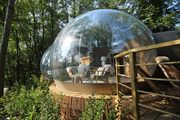 Win a Night at the Stunning Bubble, Port Lympne Reserve, Kent