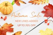 Up to 70% off All Sale (Jewellery)