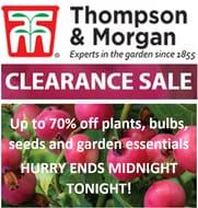 Thompson & Morgan CLEARANCE SALE - Last Chance!