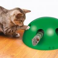 Pop 'N' Play Cat Toy