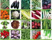 Pack of 20 Different Packets of Vegetable Seeds - Free P&P at Amazon