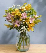 Bloom & Wild Flowers Only £13 Delivered