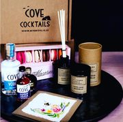 Win  Gift for Mothers Day. a Devon Cove Cocktail Kit Etc