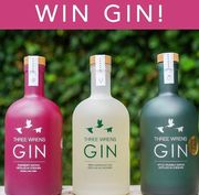Win A Bottle of Gin of Your Choice!