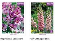 Hayloft Inspirational Sensations & Main Gardening Catalogue 2021 Available Free