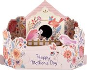 Cheap Mother's Day Card from Hallmark - 3D Pop-up - Only £4!