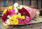 50 Roses FREE Home Delivery