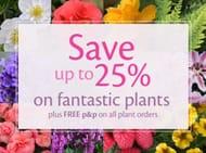 Spring Weekend Sale plus 10% off First Orders.
