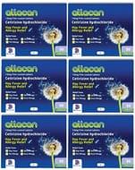 6 Pack of Hayfeve Tablets