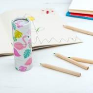 Flamingo Bay Colouring Pencils (Set of 12)