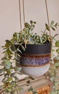Black Mojave Glaze Hanging Planter