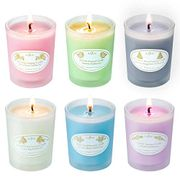 DEAL STACK - Pack of 6 Anjou Christmas Scented Candles Gift Set + £3 Coupon