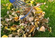 Win 1 Of 2 Complete Autumn Lawn Care Packages Worth £126.95