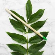 1 Lavender Seed Pencil