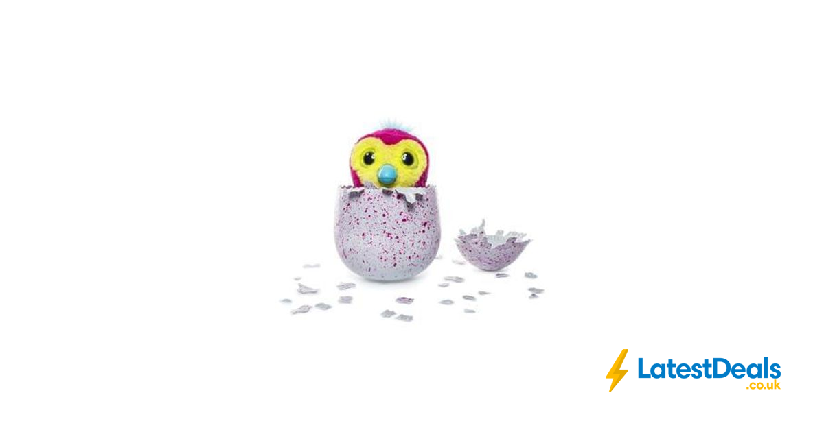 Buy Hatchimals Pengualas Pink Egg, £59 99 at Amazon Germany