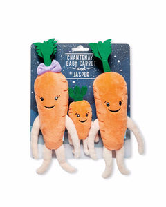 Aldi Kevin the Carrot, Katie & Family