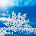 winter undefineds